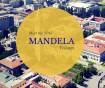 GSPP Welcomes 2015 Mandela Fellows